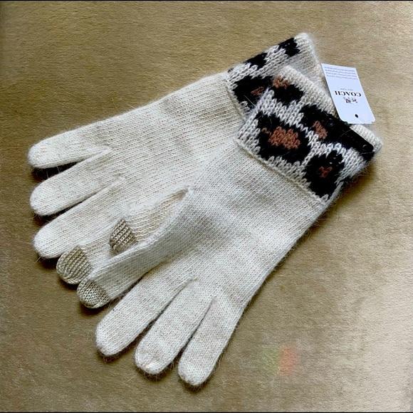 Coach leopard gloves